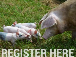 register-here-300x228